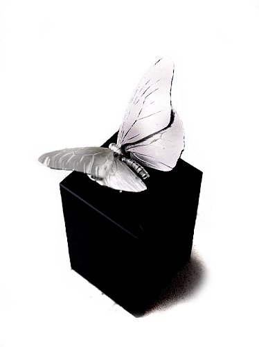 beeldje vlinder zilver